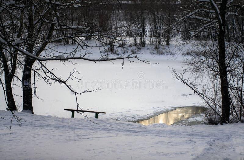Kall vintersjö med ett hål i skogen royaltyfri bild