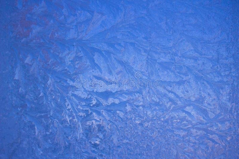 Kalla frostmodeller på exponeringsglas arkivfoto