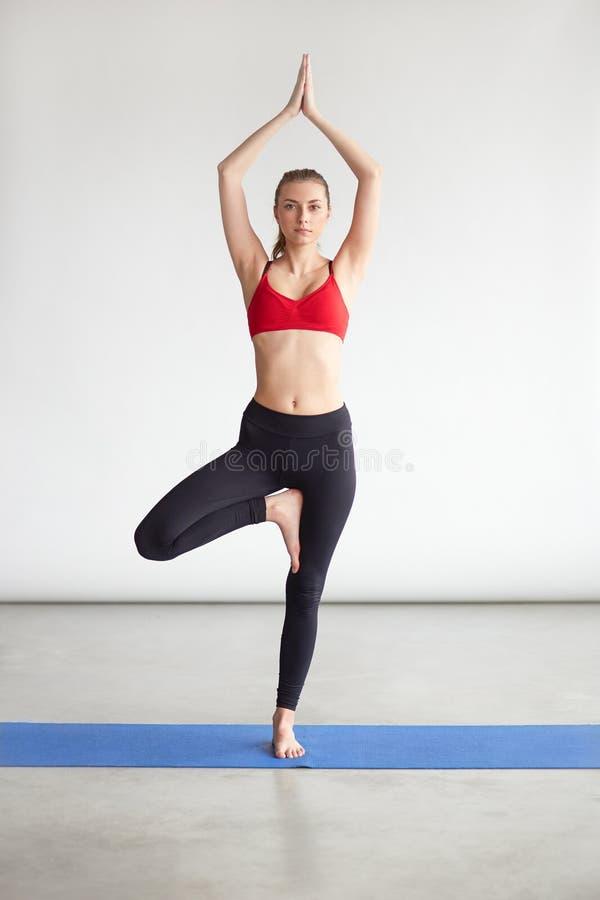 Kallade den praktiserande yogaövningen för den unga kvinnan Träd Posera royaltyfri foto