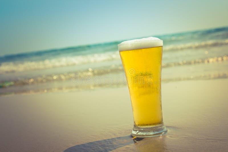 Kallt öl med havet royaltyfria bilder