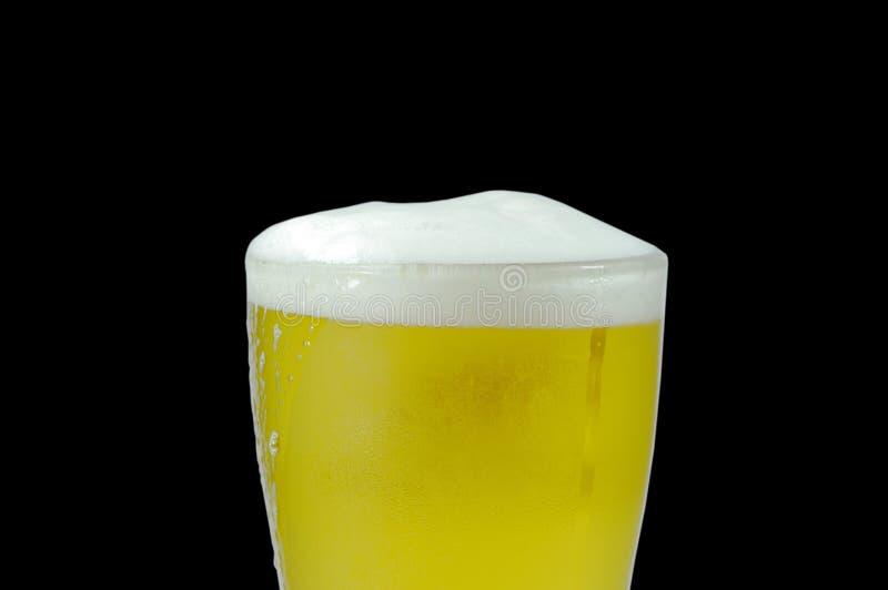 Kallt öl med skummigt i exponeringsglas på svart bakgrund fotografering för bildbyråer