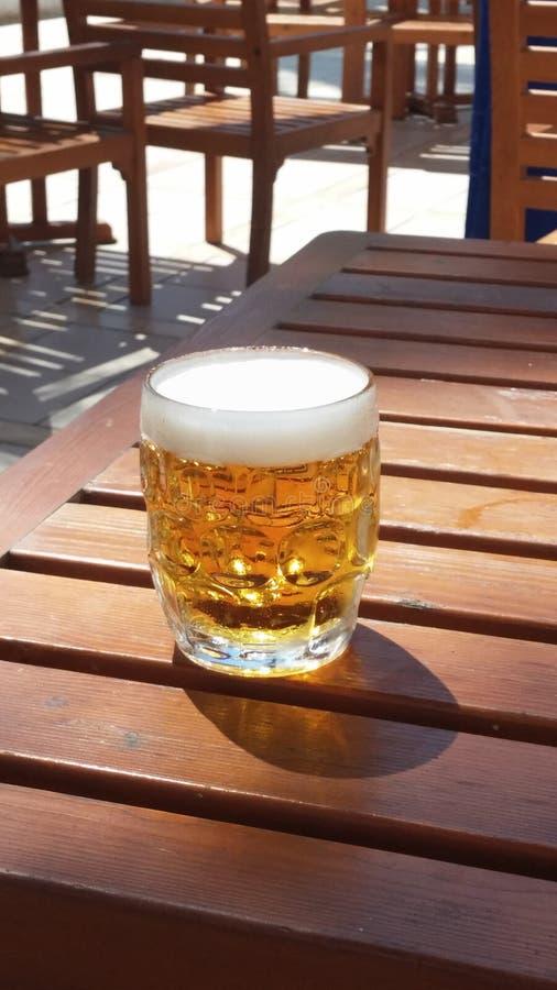 Kallt öl på solen royaltyfri foto
