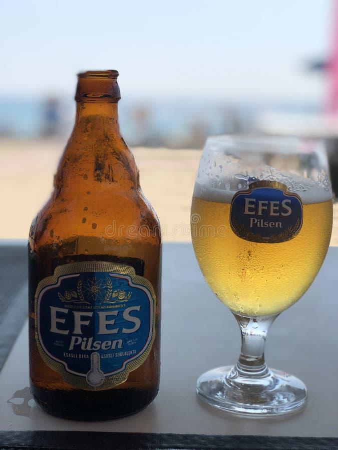 Kallt öl på stranden royaltyfria foton