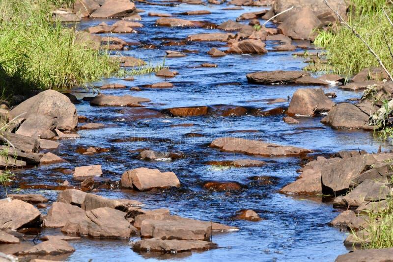 Kallt blått vatten som applåderar försiktigt ner en bäck royaltyfri foto