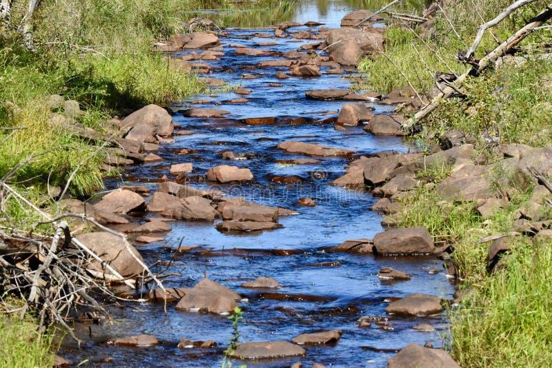 Kallt blått vatten som applåderar försiktigt ner en bäck fotografering för bildbyråer