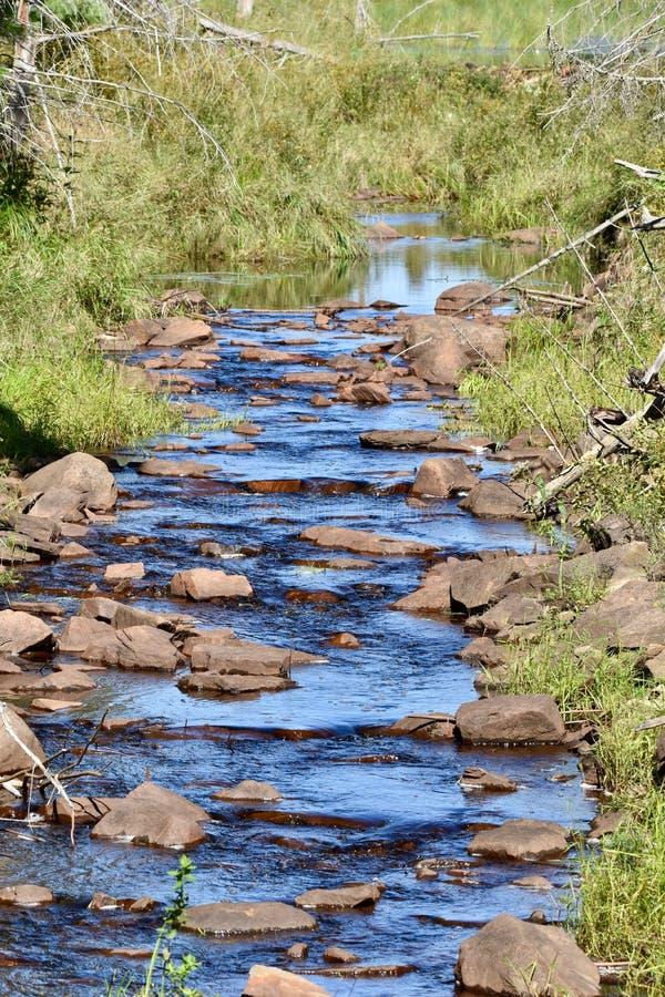 Kallt blått vatten som applåderar försiktigt ner en bäck arkivbilder