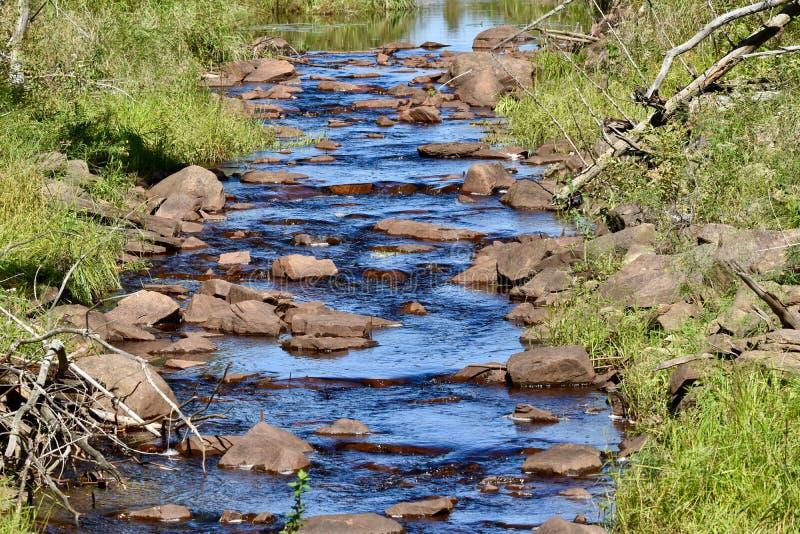 Kallt blått vatten som applåderar försiktigt ner en bäck royaltyfri bild