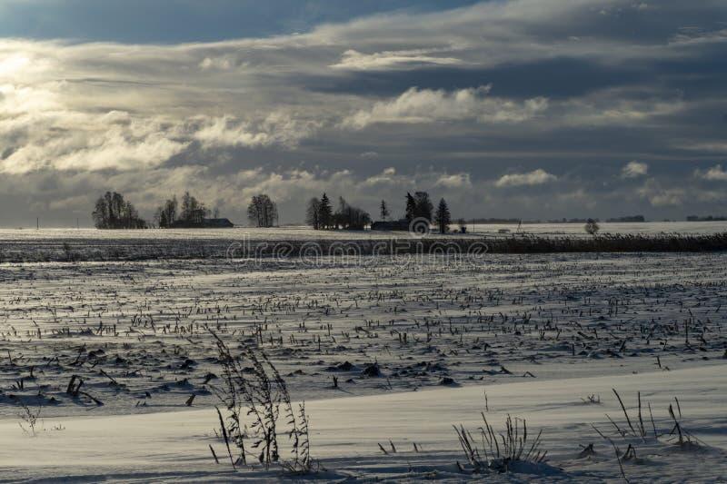 Kallt blekt snöig vinterlandskap royaltyfri foto