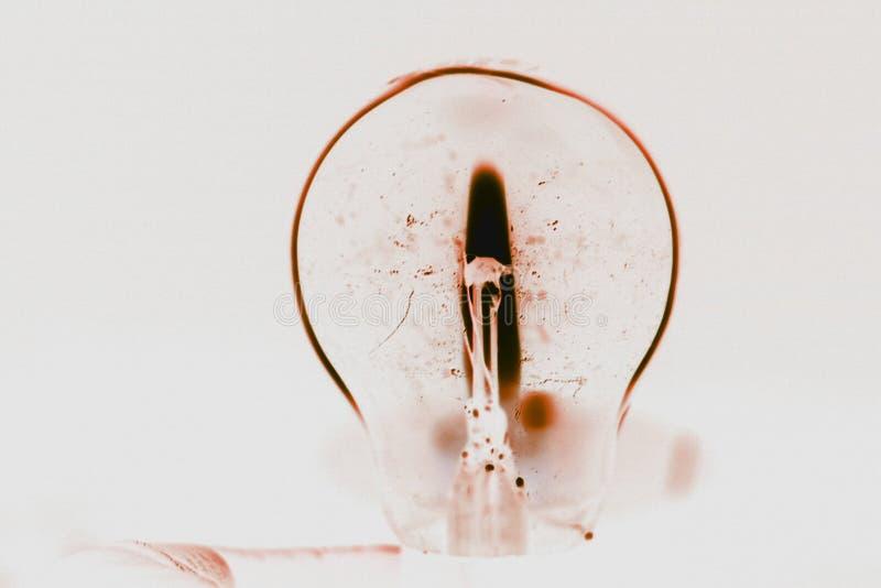 Kallt closeupskott av en lightbulb i inverterade färger royaltyfri bild