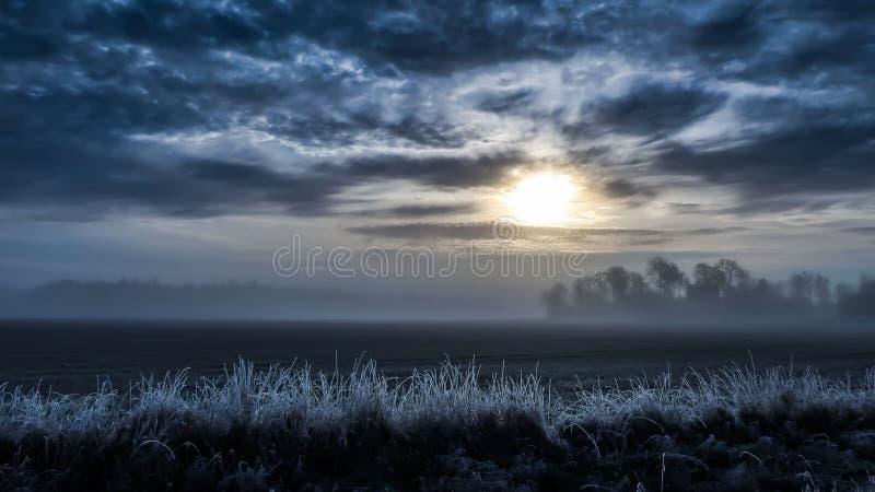 Kallt dimmigt landskap, fält i soluppgången frostigt gräs arkivbilder