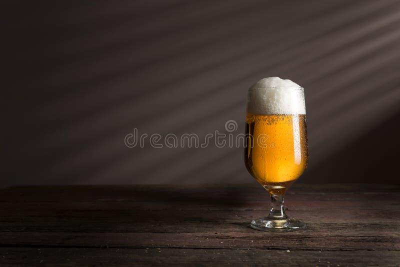 Kallt ljust öl arkivfoton
