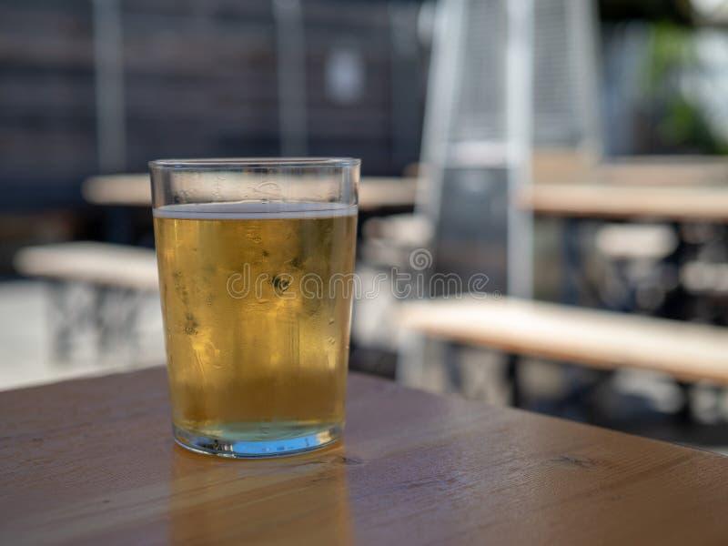 Kallt ljust öl som sitter i frostigt exponeringsglas i utomhus- picknickområde arkivbild