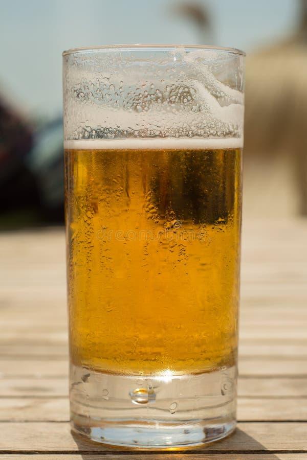 Kallt nytt öl på sommar på stranden arkivbilder