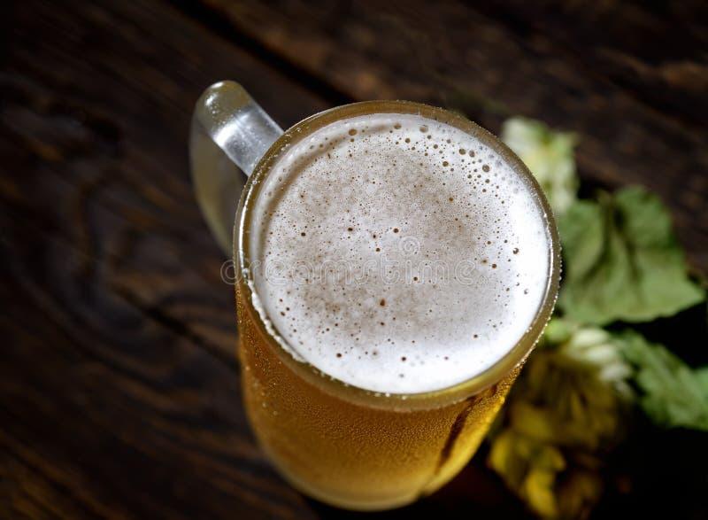 Kallt skummigt öl i ett exponeringsglas och en flygtur på en mörk bakgrund royaltyfri bild