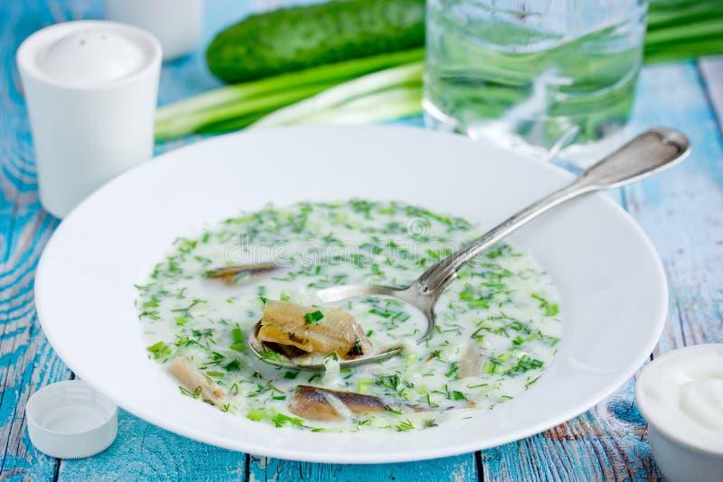 Kallt uppfriskande soppaokroshkavatten, kefir, ny gurka, dill, lök, vitlök och rökt fisk royaltyfria foton