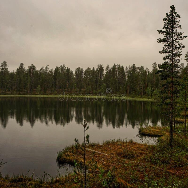 Kalm meer in Grijze de zomeravond op Lapland stock afbeelding