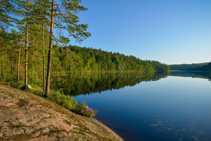 Kalm meerlandschap in de zomerochtend stock fotografie