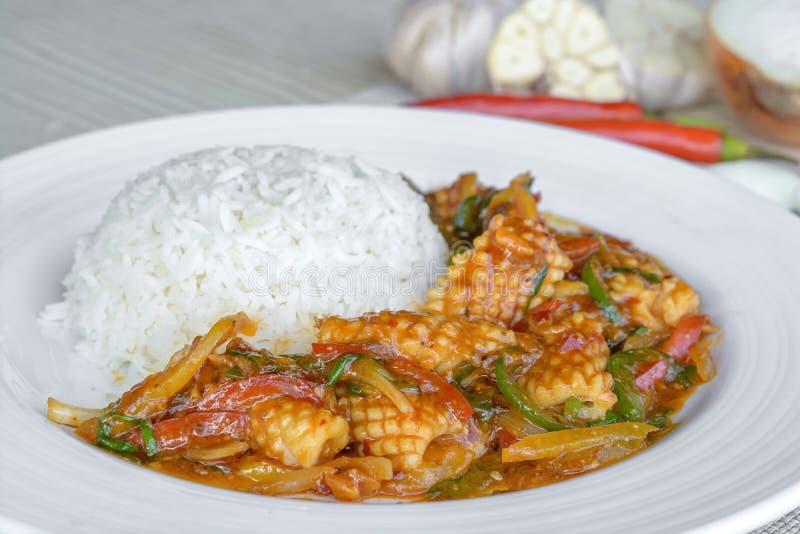 Kalmarkoch mit thailändischer cilli Paste stockbild