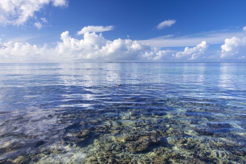Kalme tropische overzees over koraalrif stock afbeelding
