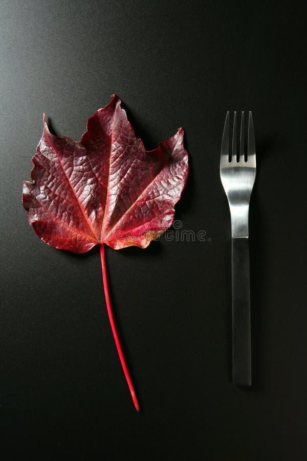 Kalorie Diet Zdrową Liść Depresji Metaforę Obraz Royalty Free