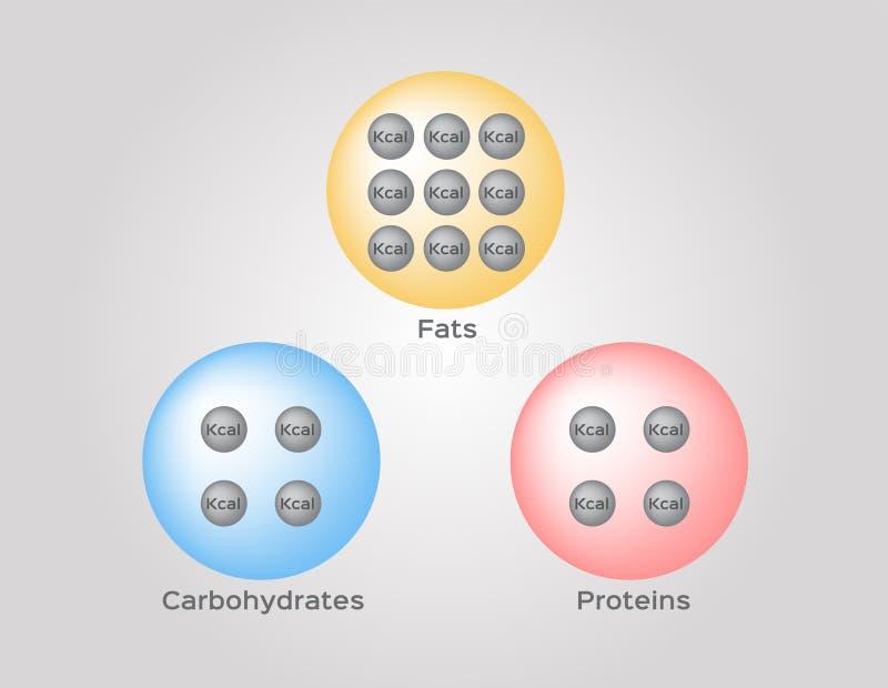 Kalorier av den infographic vektorn för för proteinfett och kolhydrat vektor illustrationer