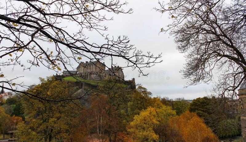 Kalt träd Silhouetted Edinburgslott från prinsgataträdgård arkivbilder
