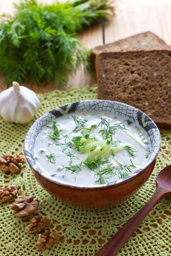 Kalte bulgarische Suppe stockfoto