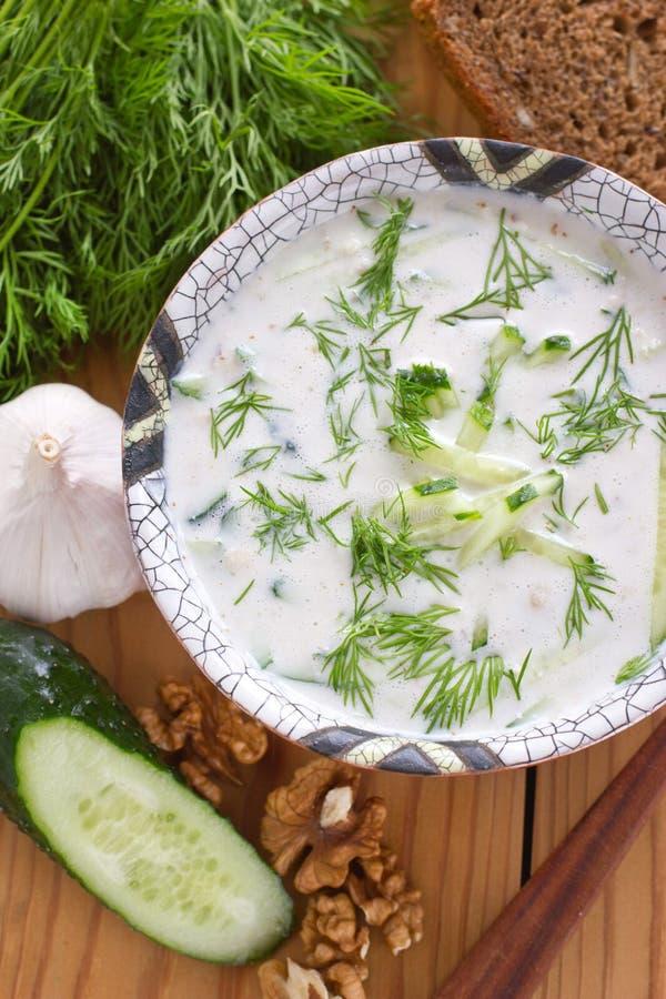 Kalte bulgarische Suppe stockfotografie