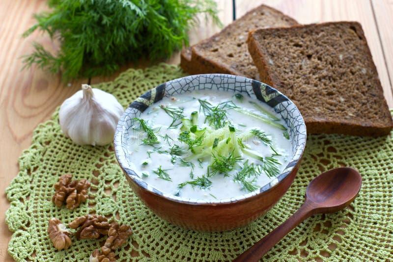 Kalte bulgarische Suppe lizenzfreie stockfotografie