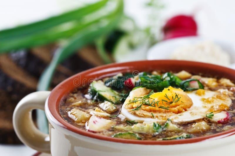 Kalte Suppe mit Eiern, Gurke und Grüns stockbild