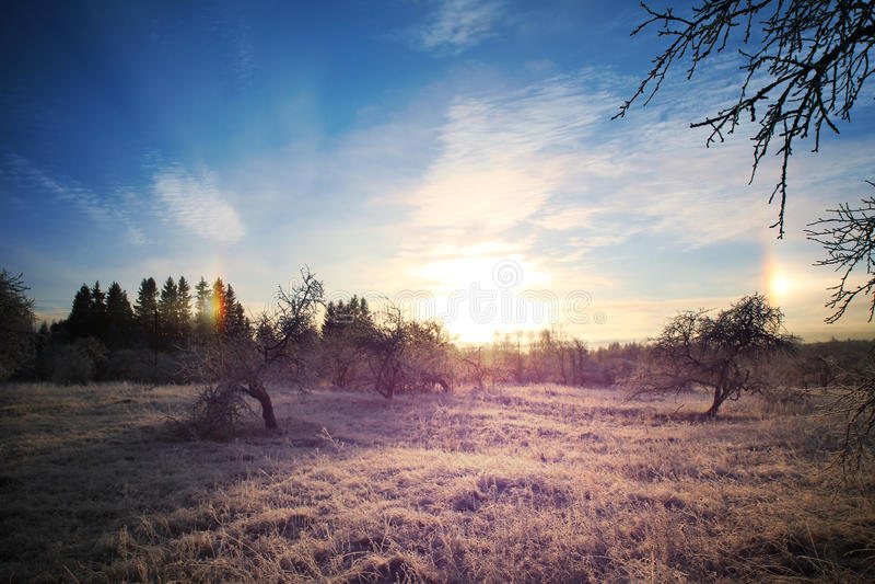Kalte Winterlandschaft mit hellem Sonnenuntergang und Blau lizenzfreie stockfotografie