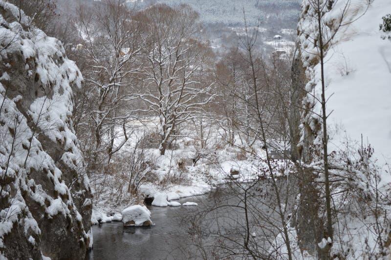 Kalter Berg-Jerma-Fluss, Winterzeit, Serbien lizenzfreie stockbilder