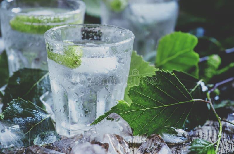 Kalter russischer Wodka, auf Birkenknospen, zerquetschte Eisbirke verlässt, vin lizenzfreie stockbilder
