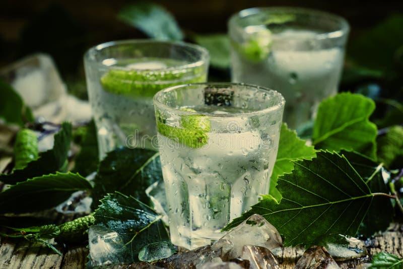 Kalter russischer Wodka mit den Birkenknospen und Eis, hartes Getränk, getont, s stockbild