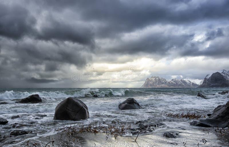 Kalter und windiger Tag in Lofoten lizenzfreies stockfoto