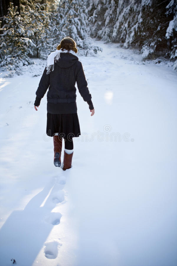 Kalter Winter stockfotografie
