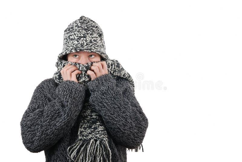 Kalter Winter lizenzfreie stockfotografie