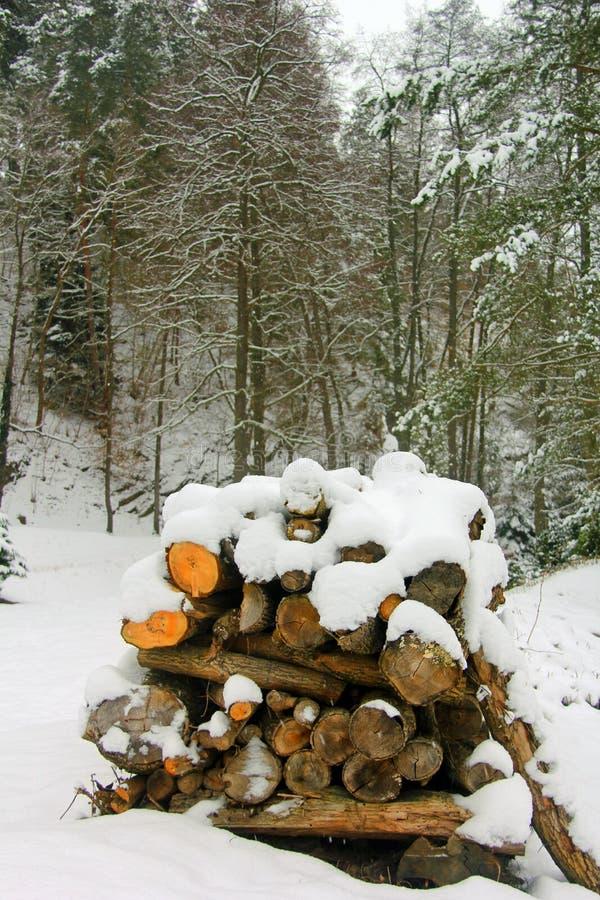 kalter Wintertag lizenzfreies stockbild