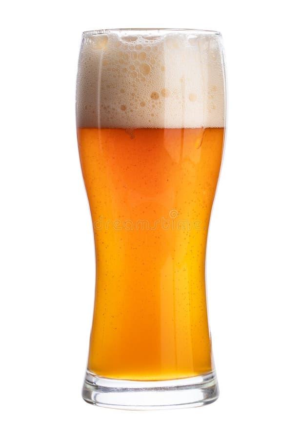 Kaltes Bier in einem Glas lokalisiert auf weißem Hintergrund Über Weiß lizenzfreies stockfoto