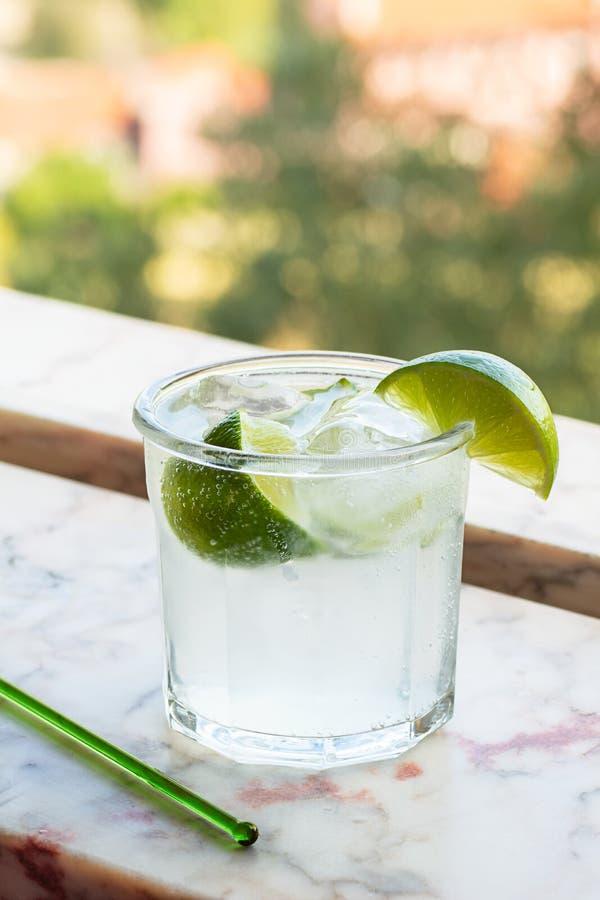 Kaltes Gin Tonic-Getränk mit Eis und Kalken stockfotos