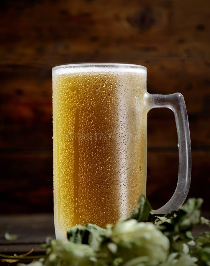 Kaltes schaumiges Bier in einem Glas, Hopfen auf einem dunklen Hintergrund stockbild