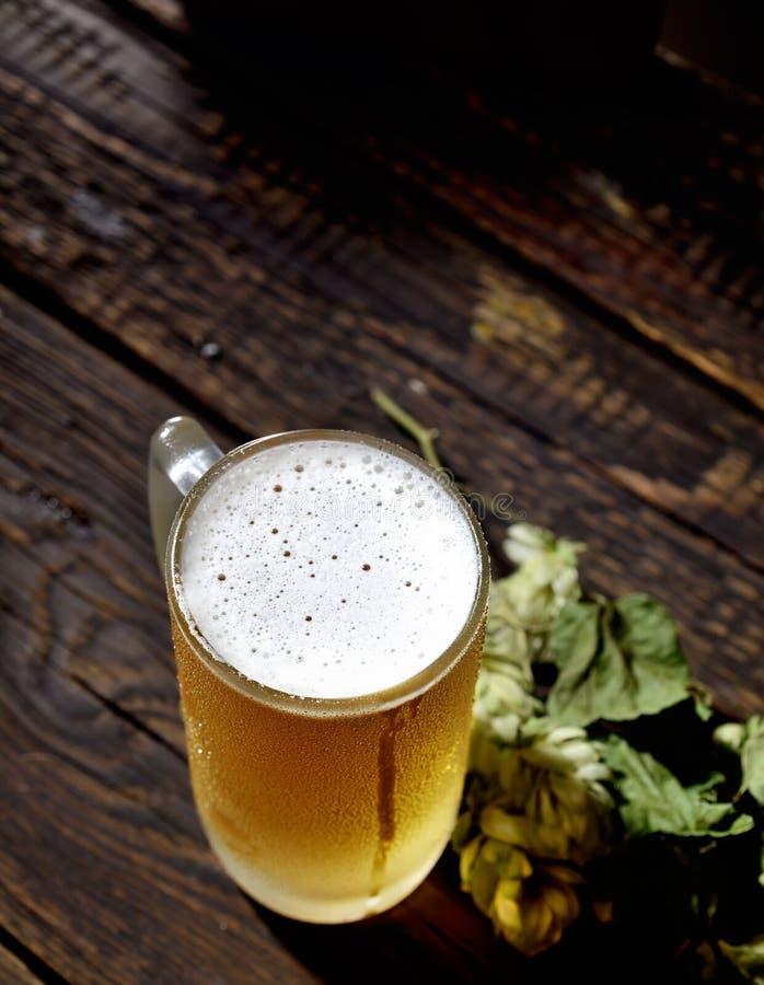 Kaltes schaumiges Bier in einer Glasflasche und in den Hopfen auf einem dunklen Hintergrund lizenzfreie stockbilder