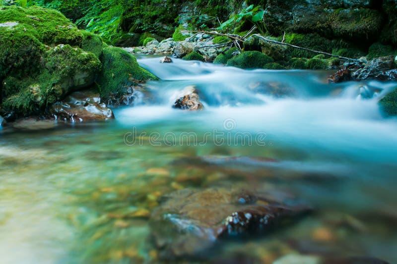 kaludraflod fotografering för bildbyråer