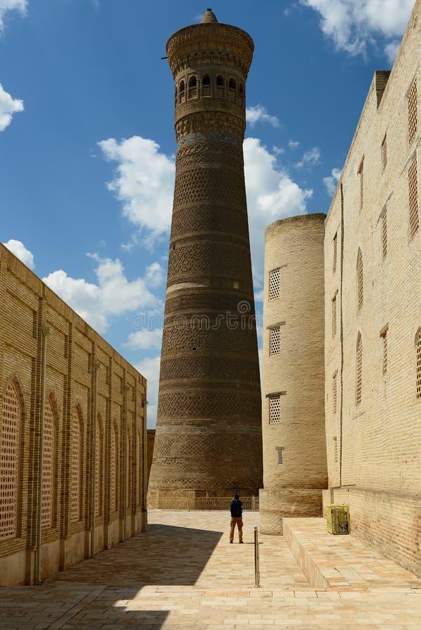 Kalyan minaret w Bukhara, Uzbekistan zdjęcie royalty free