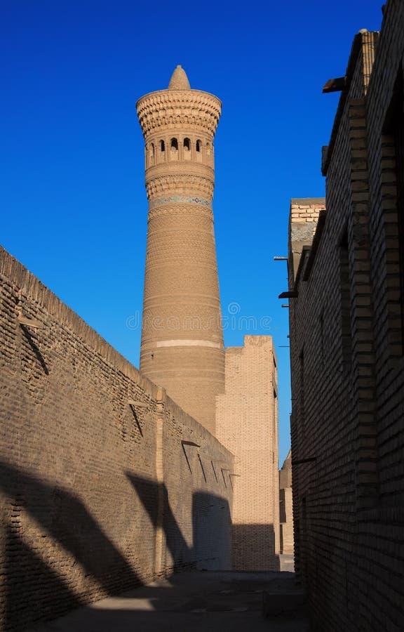 Kalyan minaret, widok od zachodniej strony, Bukhara obrazy royalty free