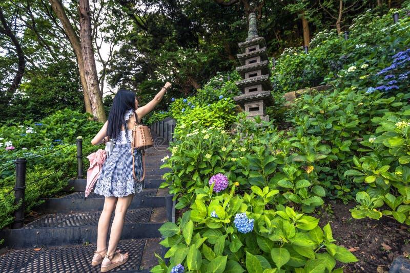 Kamakura - 06 Juni, 2019: De tuinen van Hasedera-tempel in Kamakura, Japan stock afbeelding
