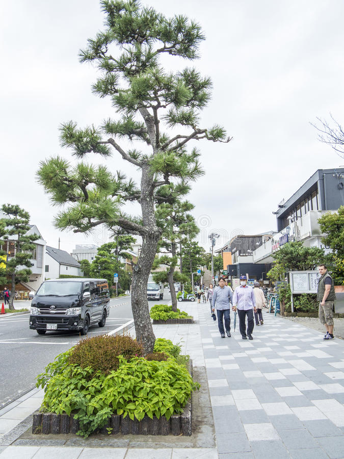 Download Kamakura main street editorial image. Image of trees - 35099830