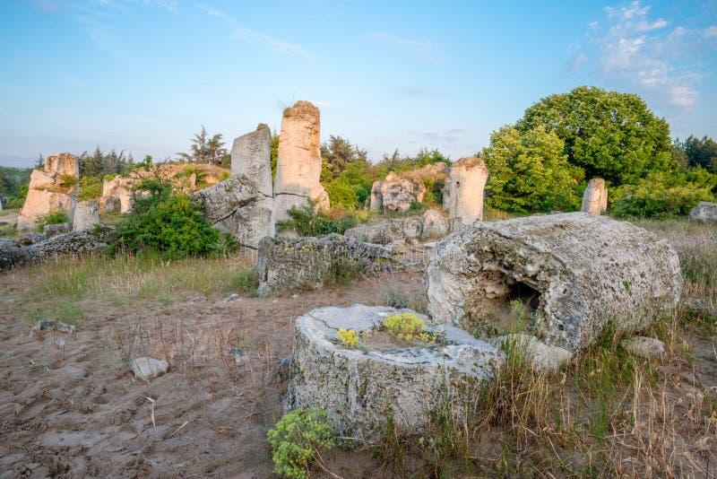 Kamani de Pobiti - formações de rocha do fenômeno em Bulgária perto de Varna fotografia de stock royalty free