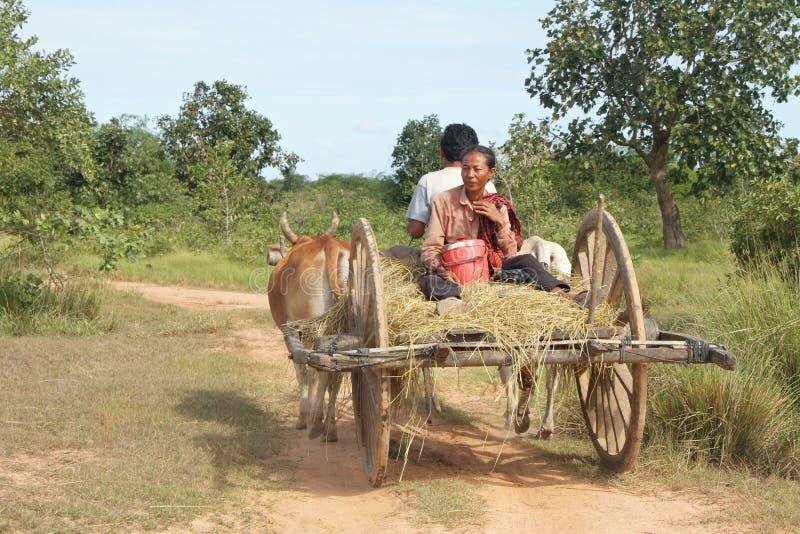 kambodżańska fura zdjęcie royalty free