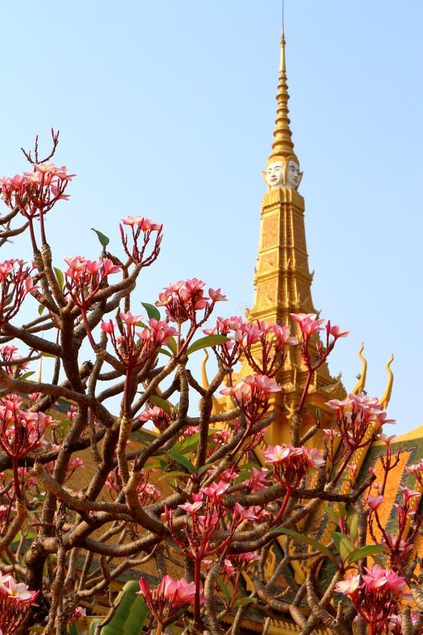 Kambodja Royal Palace royalty-vrije stock afbeelding